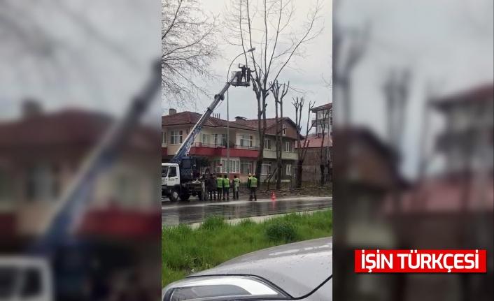 Ağaç Budayan İşçi Vinç Sepetinden Atlayarak Operatöre Saldırdı