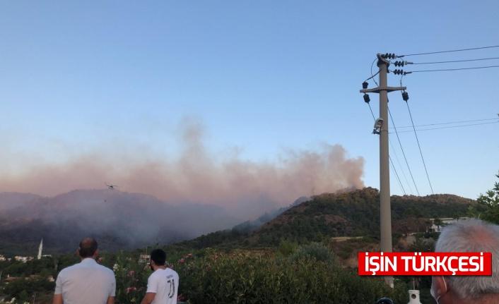Marmaris'teki orman yangınına müdahale çalışmaları devam ediyor!