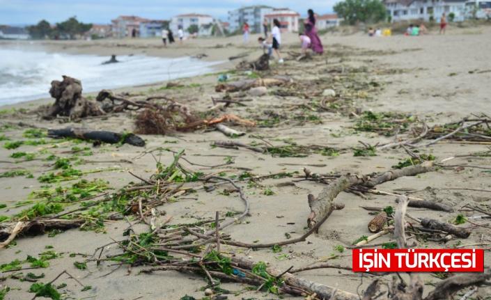 Sakarya'da etkili olan sağanak nedeniyle ağaç parçaları Karasu sahiline sürüklendi