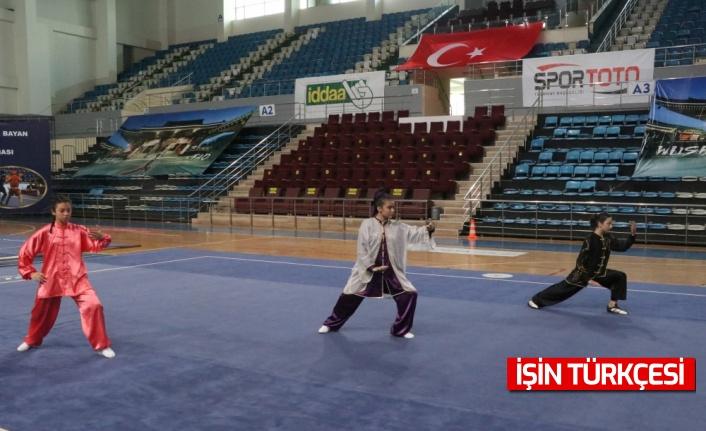 Sakarya'da Türkiye Gençler ve Büyükler Wushu Şampiyonası başladı