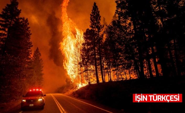 California'da 7 bölgede yangınlar devam ediyor!