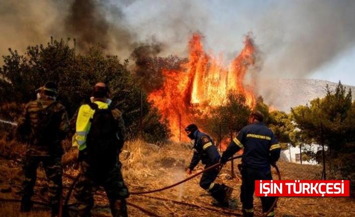 Fransa'da orman yangınları devam ediyor