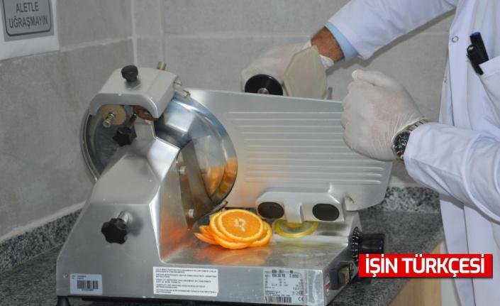 Sakarya'da meslek yüksekokulu akademisyenleri mikrodalga kurutucu geliştirdi!