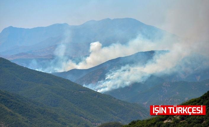 Türkiye genelinde yaşanan 6 orman yangını kontrol altına alındı