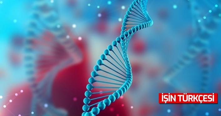 10 yıl süren araştırma sonunda Türk toplumunun genetik yapısı analiz edildi