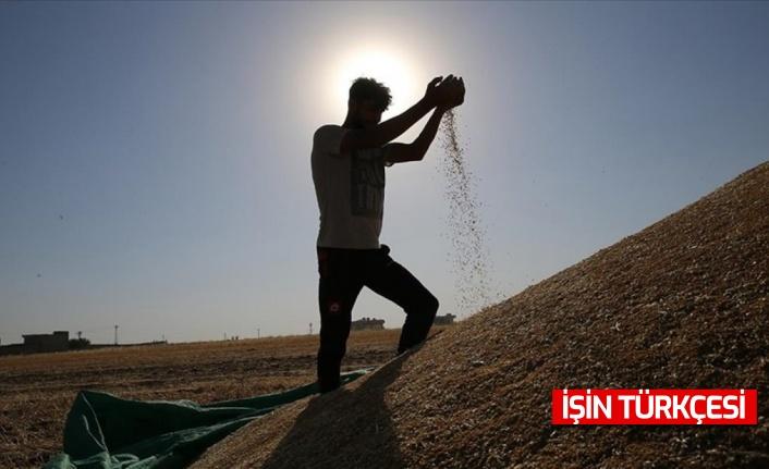 Çiftçilere 'kuraklık' desteği