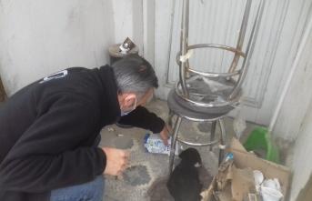 Sakarya'da polis, üşüyen köpek yavrusunu ekip otosunda ısıttı
