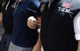 Mardin ve KKTC'de FETÖ gözaltıları