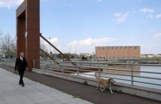 Sakarya Park'ta Çalışmalar Devam Ediyor
