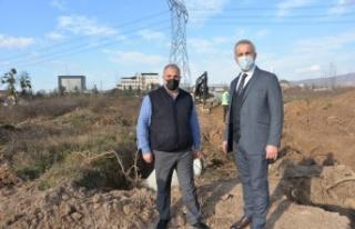 """Hendek Belediye Başkanı Turgut Babaoğlu: """"Seçim..."""