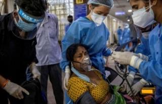 Hindistan'da yeni ölümcül salgın, vaka sayısı...