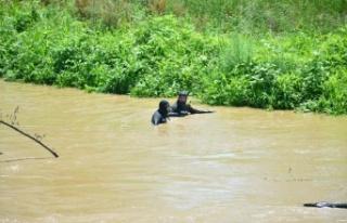 Sakarya Nehri'nde kaybolan genci arama çalışmaları...