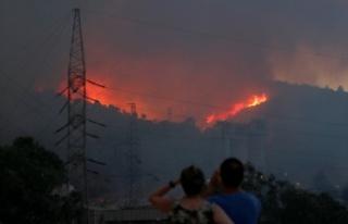 Milas'taki termik santrale sıçrayan yangın...