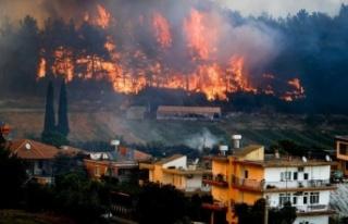 Orman yangınlarında son durum: 161'i kontrol altında,...