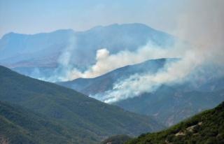 Türkiye genelinde yaşanan 6 orman yangını kontrol...