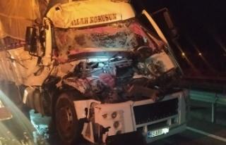 D-650 karayolunda domates yüklü kamyon tıra çarptı