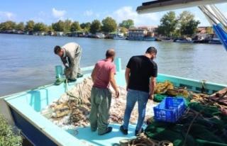 Sakaryalı balıkçılar avın ilk gününde karaya...