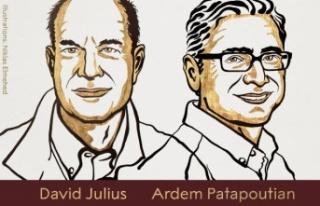 2021 Nobel Tıp Ödülü'nün sahipleri David...