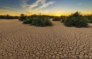 Google'dan iklim değişikliğini inkar edenlere...