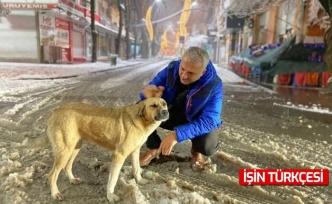 Hendek Belediye Başkanı Babaoğlu'ndan Yoğun Kar Mesaisi