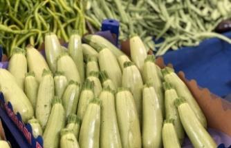 Marmara Bölgesi genelinde Şubat ayında fiyatı en fazla artan ürün kabak oldu
