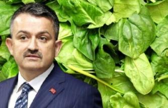 Tarım ve Orman Bakanı Bekir Pakdemirli'den ıspanaktan zehirlenme vakalarına ilişkin açıklama