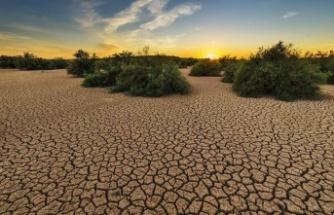 Google'dan iklim değişikliğini inkar edenlere yeni karar