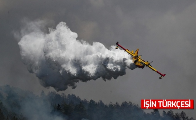 AB'den Türkiye'ye orman yangınları için uçak desteği geldi!